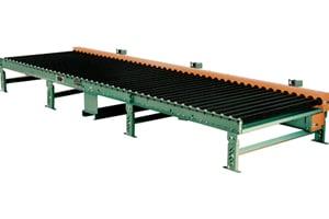 Pallet Conveyor Roach